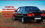 Советы по выбору моторного масла для автомобиля «ВАЗ-2115»